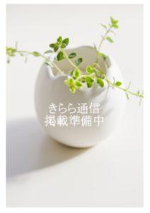 kirari-book-2019-00のサムネイル